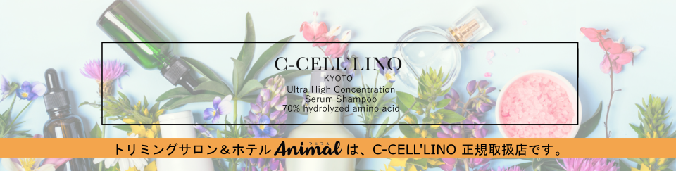 C-CELL'LINO